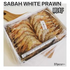 Sabah White Prawn 51/60
