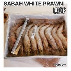Sabah White Prawn 26/30