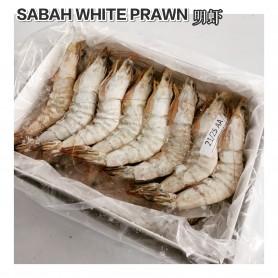 Sabah White Prawn 21/25